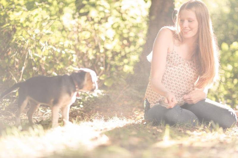Tierfotos-Katzenfotografie-Pferdefotografie-Hundefotos-Pferdefotos-0013