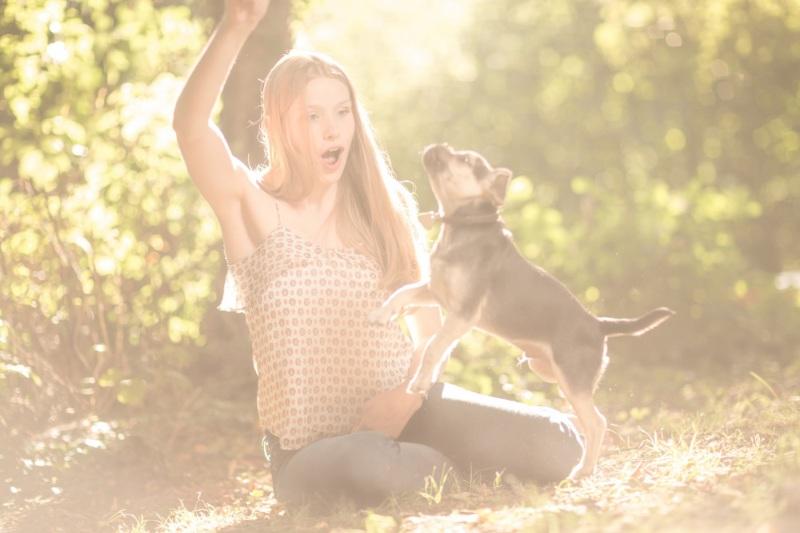 Tierfotos-Katzenfotografie-Pferdefotografie-Hundefotos-Pferdefotos-0014