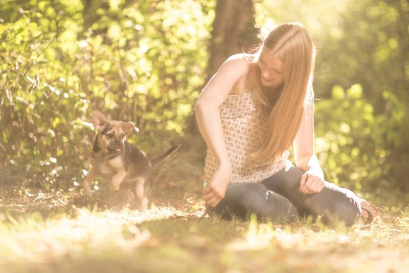 Tierfotos-Katzenfotografie-Pferdefotografie-Hundefotos-Pferdefotos-0015